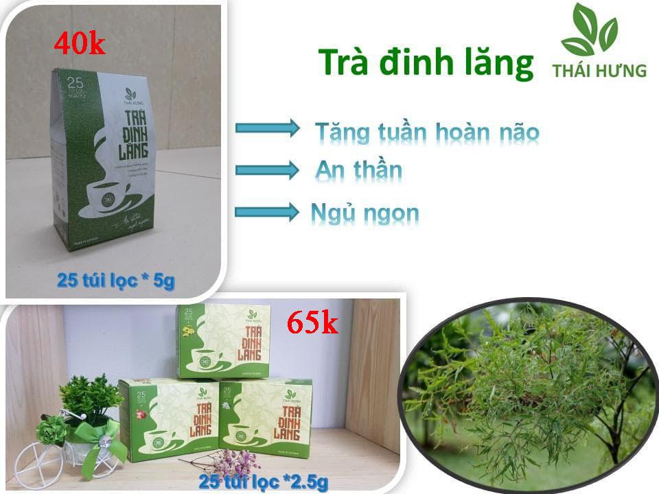Trà đinh lăng Thái Hưng 25 túi lọc 2.5g cao cấp trị chứng mất ngủ, giúp an thần (Đlý LH 0934449922)
