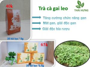 Trà Cà Gai Leo Thái Hưng 25 túi lọc 5g trị các bệnh về gan, giải độc rượi bia ( đại lý LH 0934449922