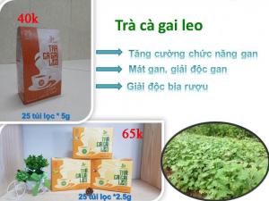 Trà Cà Gai Leo Thái Hưng 25 túi lọc 5g trị các bệnh về gan, giải độc rượi bia
